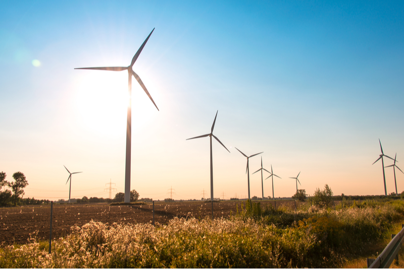 Wind power generation in Texas surpasses power generated from coal for the first time in 2019.