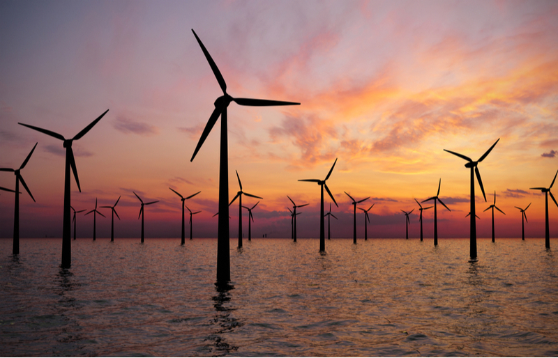 Offshore wind farms harness the power of sea winds.