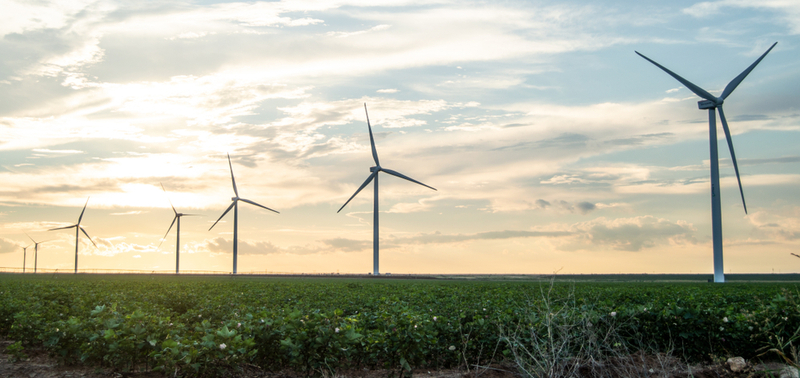 Wind farms in Texas have gained popularity across the country.