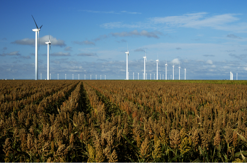 Texas leads the nation in wind power.