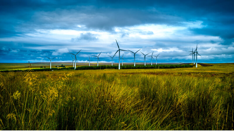 A massive wind farm project has caused controversy in Texas.